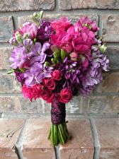 Hintergrundbilder Blumensträuße Rosen Levkojen Freesie