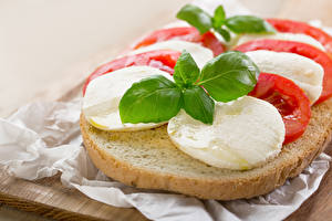 Bilder Butterbrot Brot Käse Blattwerk