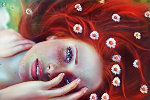Picture Camomiles Painting Art Redhead girl Staring Hair Face Fantasy Girls