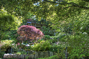Bilder Kanada Garten Wasserfall HDR Strauch Butchart Gardens