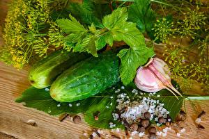 Fotos Gurke Knoblauch Dill Salz das Essen