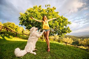 Bilder Hunde Retriever Braune Haare Freude Hand Mädchens