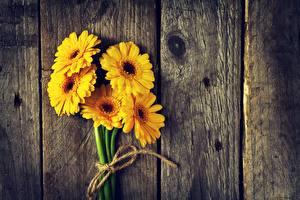 Fotos Gerbera Gelb Bretter Blumen