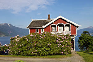 Photo Norway Building Mansion Shrubs Balestrand Cities