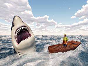 Bilder Meer Haie Boot Mann Wasserwelle