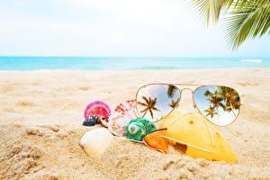 Bilder Muscheln Brille Sand Strand Spiegelung Spiegelbild Natur