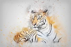 Hintergrundbilder Tiger Gezeichnet Tiere