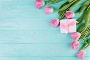 Papéis de parede Tulipas Dia dos Namorados Cor-de-rosa Tábuas de madeira Flores
