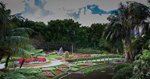 Hintergrundbilder Australien Brisbane Park Design Rasen Bäume Natur