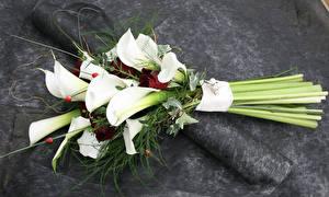 Hintergrundbilder Sträuße Calla palustris Rosen
