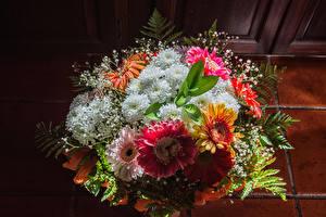 Bilder Sträuße Chrysanthemen