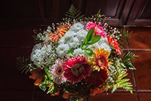 Wallpapers Bouquets Chrysanthemums flower