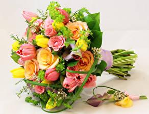 Fotos Blumensträuße Rose Drachenwurz Tulpen