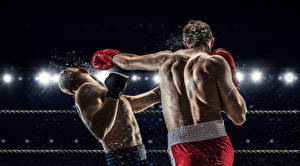 Photo Boxing Men 2 Human back To hit athletic