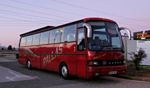 Bilder Omnibus Bordeauxrot SETRA S 215 HD MAN