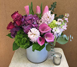 Bilder Kerzen Blumensträuße Rosen Hortensien Tulpen Drachenwurz Levkojen Blumen