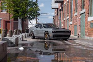 Bilder Dodge Graue Metallisch 2019 Challenger SRT Hellcat automobil