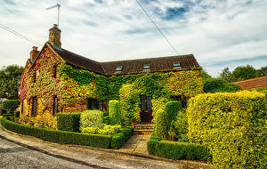 Pictures England Building Mansion Design Shrubs Cities