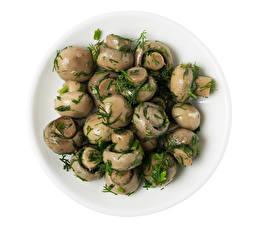 Hintergrundbilder Pilze Dill Zucht-Champignon Weißer hintergrund Das Essen