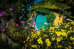 Fotos Neuseeland Parks Haus Kosmeen Zinnien Hobbit House Matamata Natur
