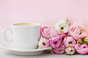 Wallpaper Ranunculus Coffee Cup Flowers