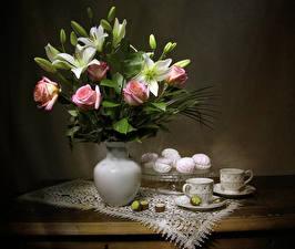 Bilder Stillleben Rosen Lilien Zefir Bonbon Vase Tasse Blumen