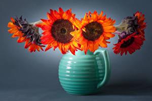 Bilder Sonnenblumen Großansicht Vase