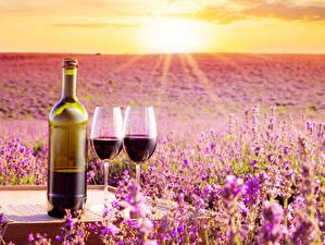 Bakgrundsbilder på skrivbordet Soluppgångar och solnedgångar Vin Lavendlar Flaska Vinglas Två 2 Mat