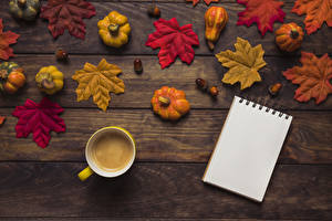 Image Autumn Pumpkin Coffee Wood planks Foliage Cup Notepad