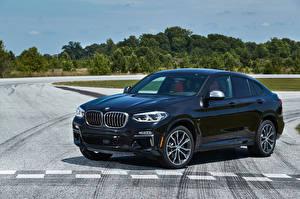 Bilder BMW Blau Metallisch 2019 X4 M40i Autos