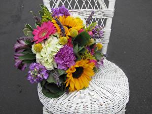 Fotos Sträuße Levkojen Hortensien Gerbera Sonnenblumen Blüte