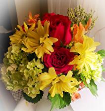 Hintergrundbilder Sträuße Rosen Hortensien Chrysanthemen