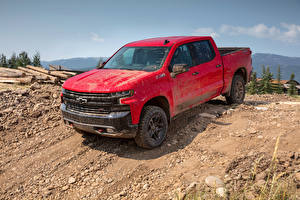 Hintergrundbilder Chevrolet Pick-up Rot Metallisch 2019 Silverado LT Z71 Trailboss Crew Cab Autos