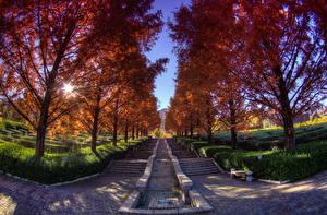 Hintergrundbilder Japan Herbst Park Bäume Treppe Strauch Minobu-cho Yamanashi Prefecture Natur