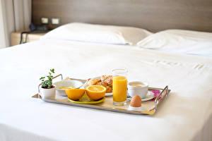 Fotos Saft Apfelsine Frühstück Trinkglas Tasse Ei Bett Lebensmittel