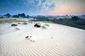 Bilder Niederlande Park Sonnenaufgänge und Sonnenuntergänge Sand Drents-Friese Wold National Park