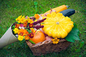 Image Pumpkin Tagetes Wicker basket Food