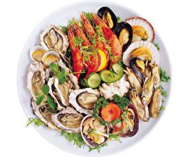 Photo Seafoods Caridea White background Plate