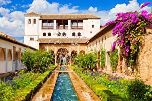Desktop wallpapers Spain Building Fountains Buganvilla Palace Bush Alhambra de Granada Cities