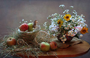 Images Still-life Bouquets Camomiles Apples Hedgehogs Table Wicker basket Food