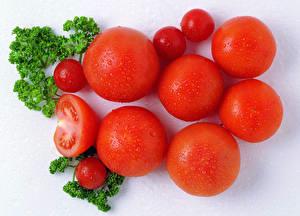 Bilder Tomate Großansicht Tropfen Lebensmittel