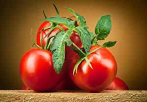 Bilder Tomaten Hautnah Blattwerk das Essen