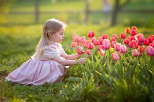 Bilder Tulpen Kleine Mädchen Blond Mädchen Kleid Kinder