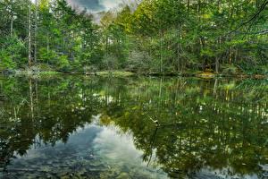 Hintergrundbilder Vereinigte Staaten Wälder See Spiegelung Spiegelbild Roaring Brook Nature Center Natur