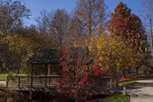 Hintergrundbilder USA Park Herbst Brücken Bäume Gibbs Gardens Natur
