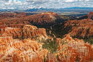 Fotos USA Park Felsen Canyon Bryce Canyon National Park Natur
