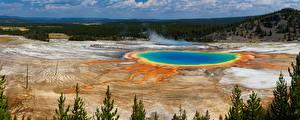 Hintergrundbilder Vereinigte Staaten Park See Wälder Yellowstone Natur
