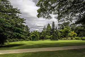 Pictures United Kingdom Parks Lawn Trees Branches Garden Harlow Carr Nature