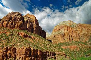 Bilder Zion-Nationalpark Vereinigte Staaten Park Felsen Natur