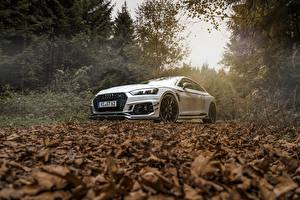 Wallpaper Audi White Foliage Coupe ABT RS5-R automobile